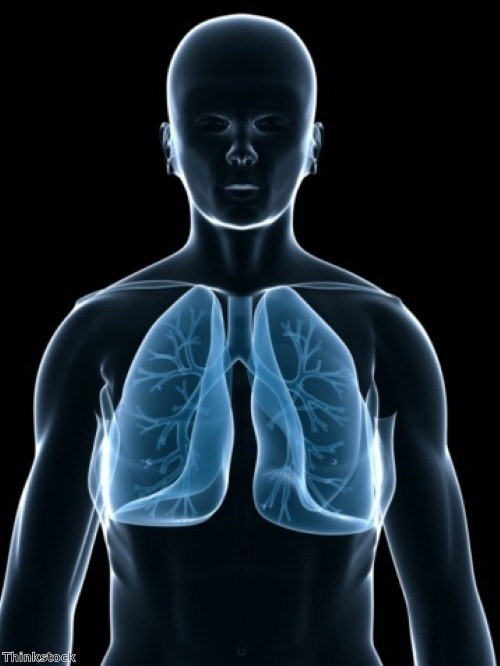 Bigger lungs \'linked with better survival rates for transplant patients\'