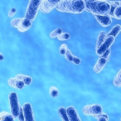 Progress hailed in combatting NHS MRSA and C. difficile infections