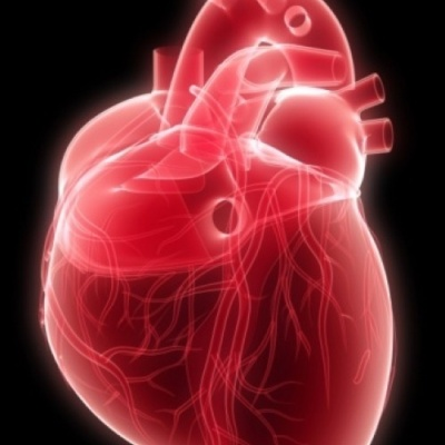 Safer and faster new heart scanning method developed