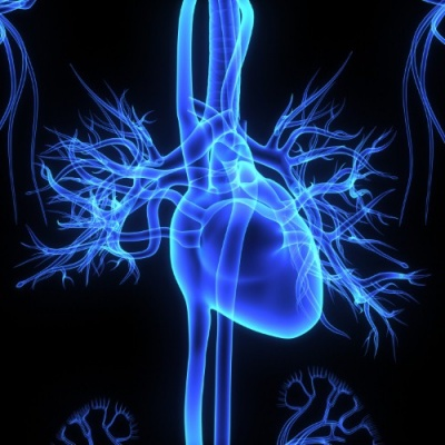 Janssen studies show cardiovascular benefits of Invokana