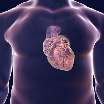 New beating heart patch developed to repair damage to heart