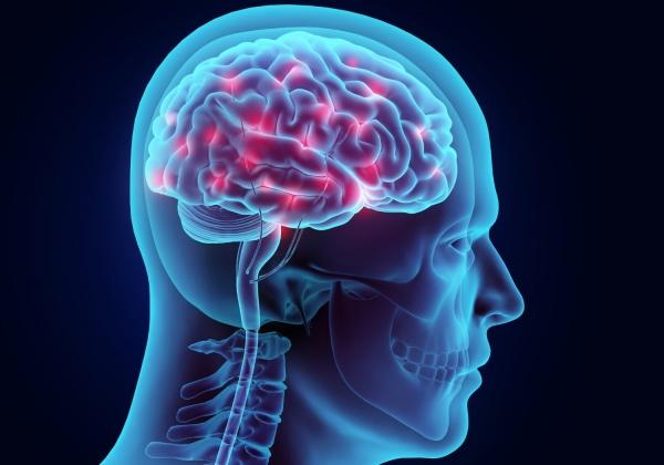 Shared molecular traits linking autism, schizophrenia and bipolar disorder identified
