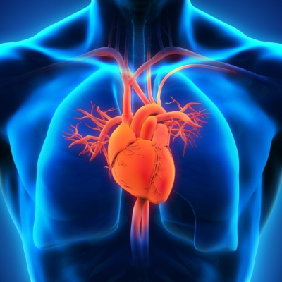 AstraZeneca study shows cardiovascular benefits of Farxiga